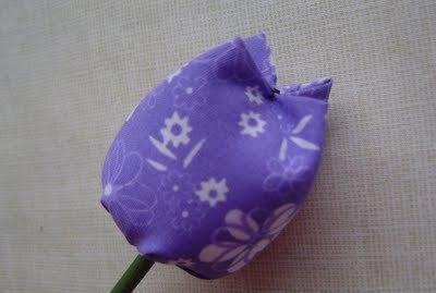 Tulipe004