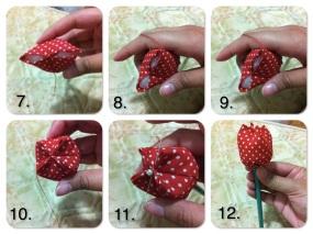 Tulipe036