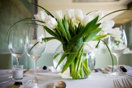 tulipesblanches004