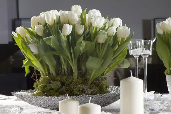 tulipesblanches021