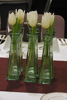 tulipesblanches023