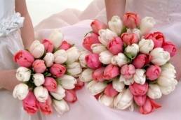 tulipesbouquet005