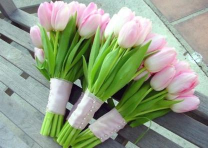 tulipesbouquet006