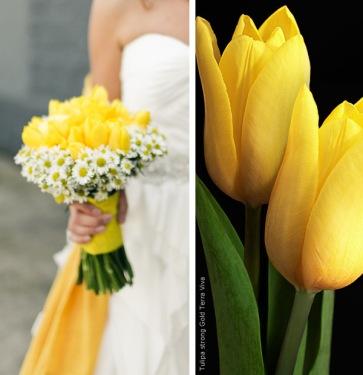tulipesbouquet012