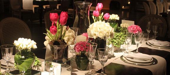tulipescolores002