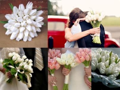 tulipescolores010