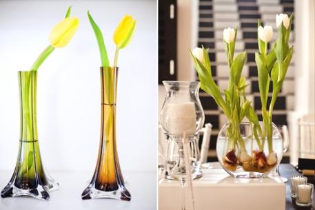 tulipesjaunes010