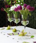 tulipeslilass003