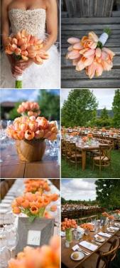 tulipesoranges002