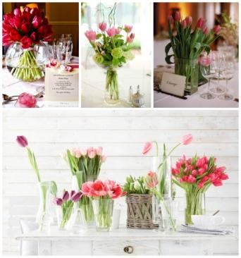 tulipesrouges004