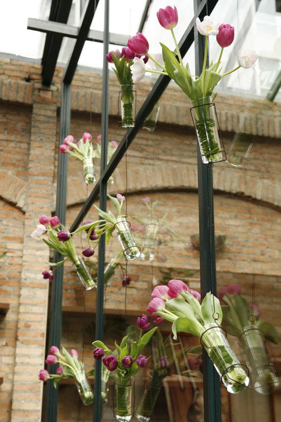 tulipesuspendus001